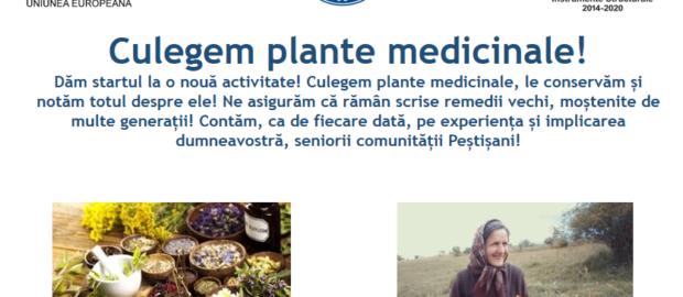 Documentare plante medicinale